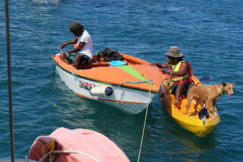 2019 02 02 Mayreau Saline Bay et Salt Whistle Bay (17).JPG